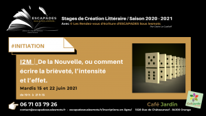 """""""De la Nouvelle, ou comment écrire la brièveté, l'intensité et l'effet."""" 15 et 22 juin 2021"""