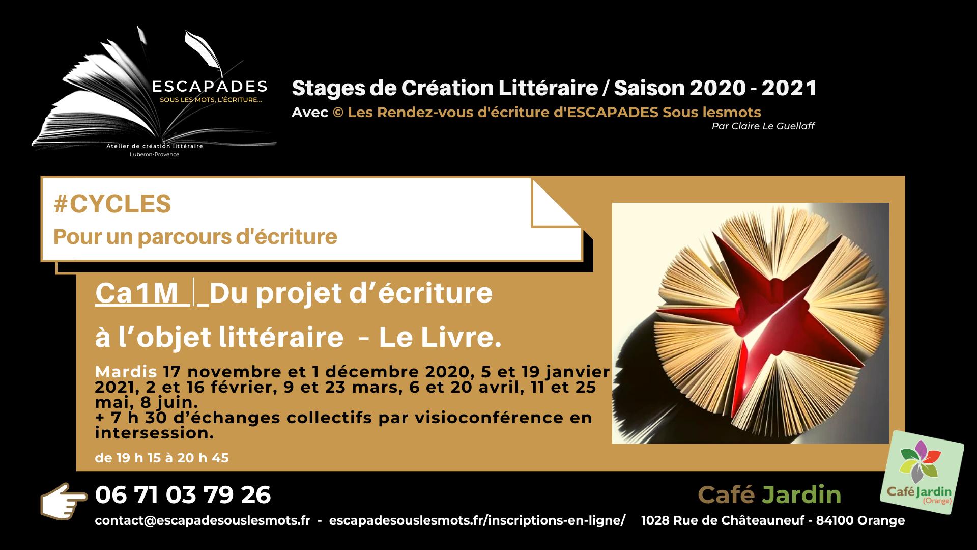 """#CYCLES et accompagnement semi-individuel : """"Du projet d'écriture à l'objet littéraire – Le Livre."""" Du 17 novembre 2020 au 8 juin 2021"""